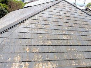 屋根の損傷(塗装の剥がれ)