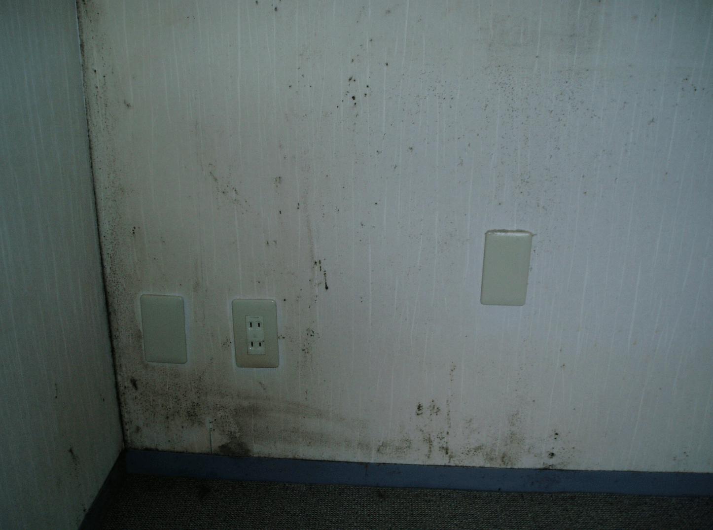 電気設備や家電機器への被害(一次被害)