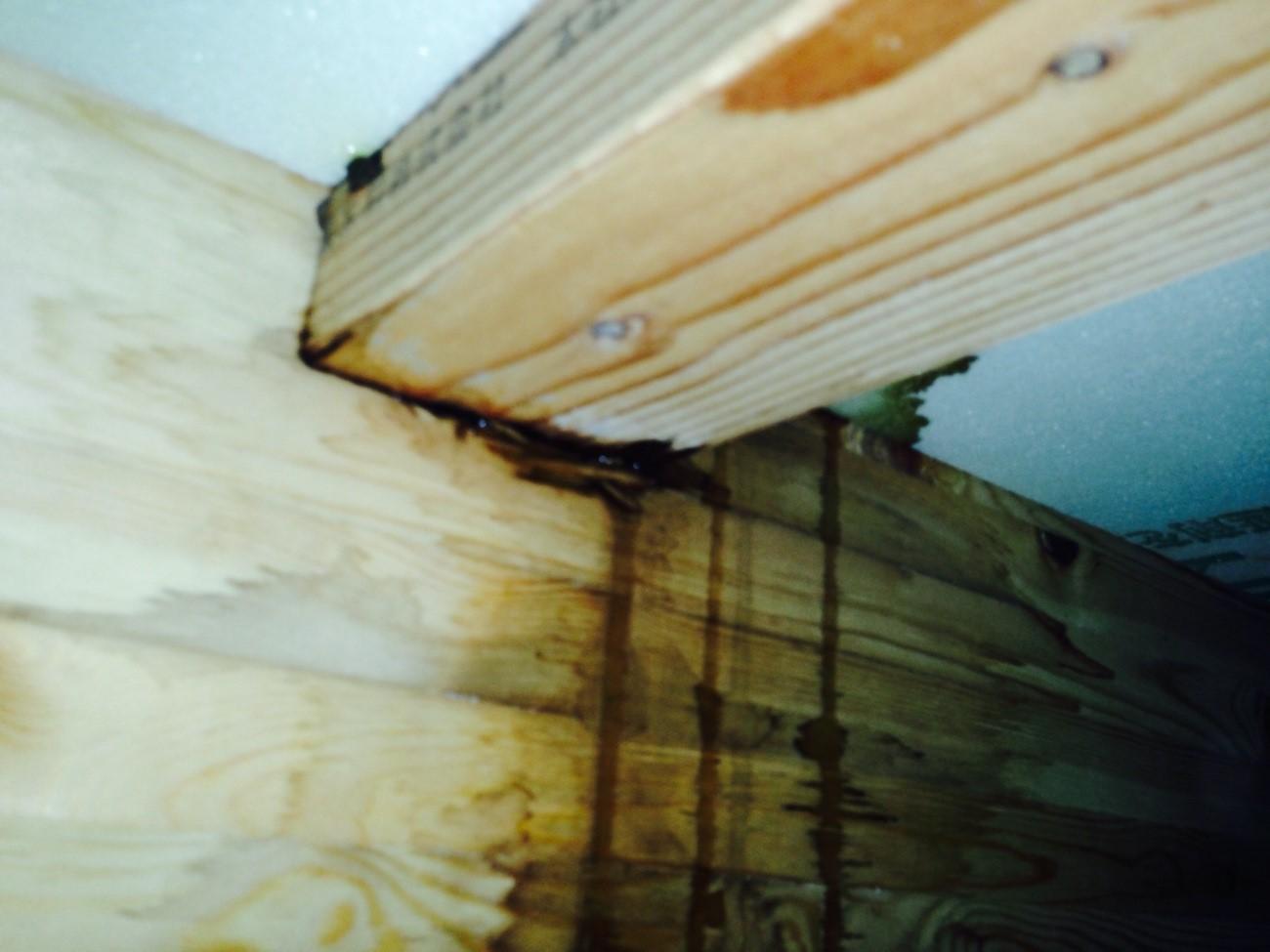 劣化を放置すると雨漏りのリスクが高まる