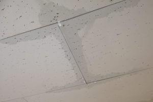 天井の雨漏り発生!4つの発生原因とDIY修理法を完全公開!