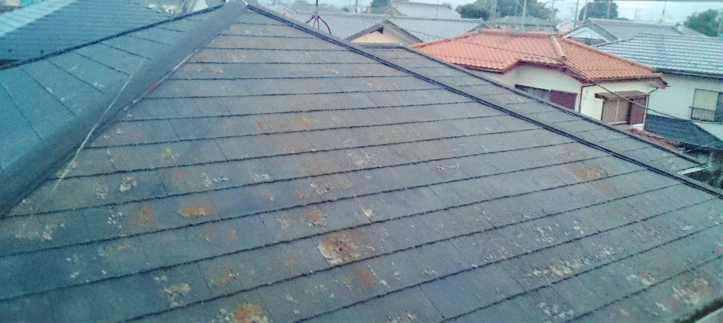 最も多い屋根の発生原因