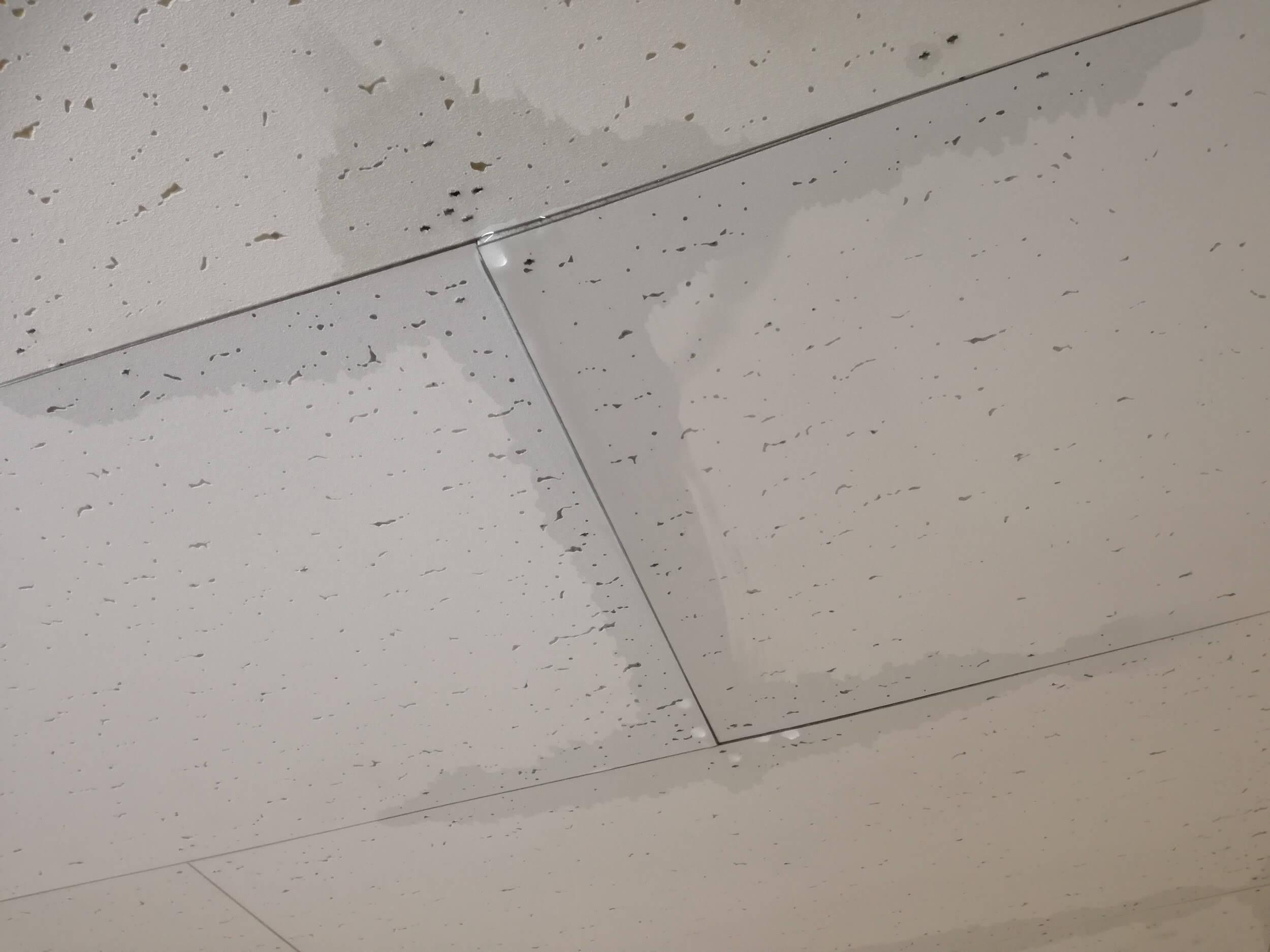 プレハブ屋根の雨漏り原因を徹底解説
