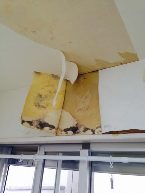 雨樋の修理や補修の放置・発生する損害と金額は?