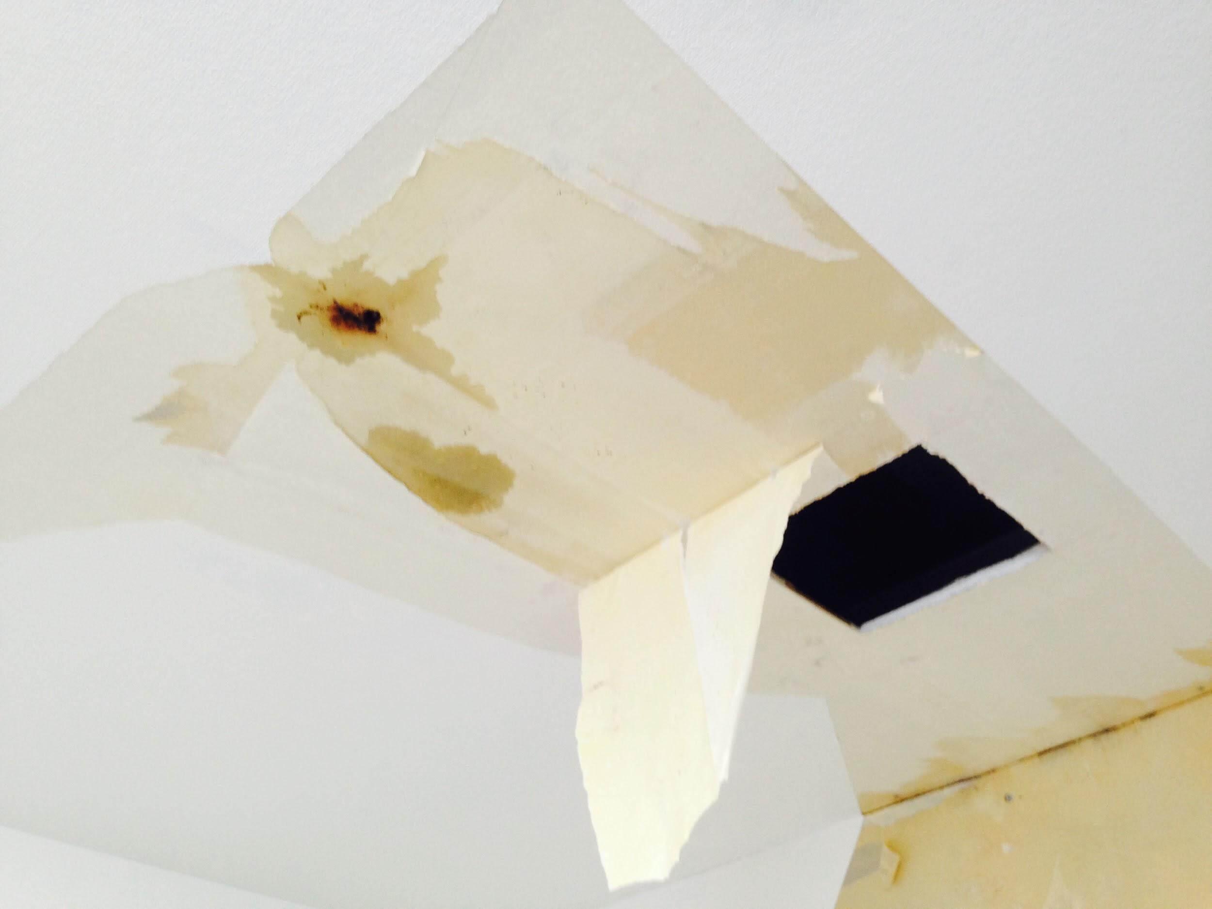 内装だけでは済まない雨漏り被害