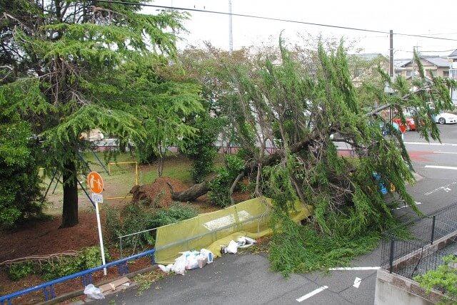 台風に強いカーポートの設置方法を徹底解説!