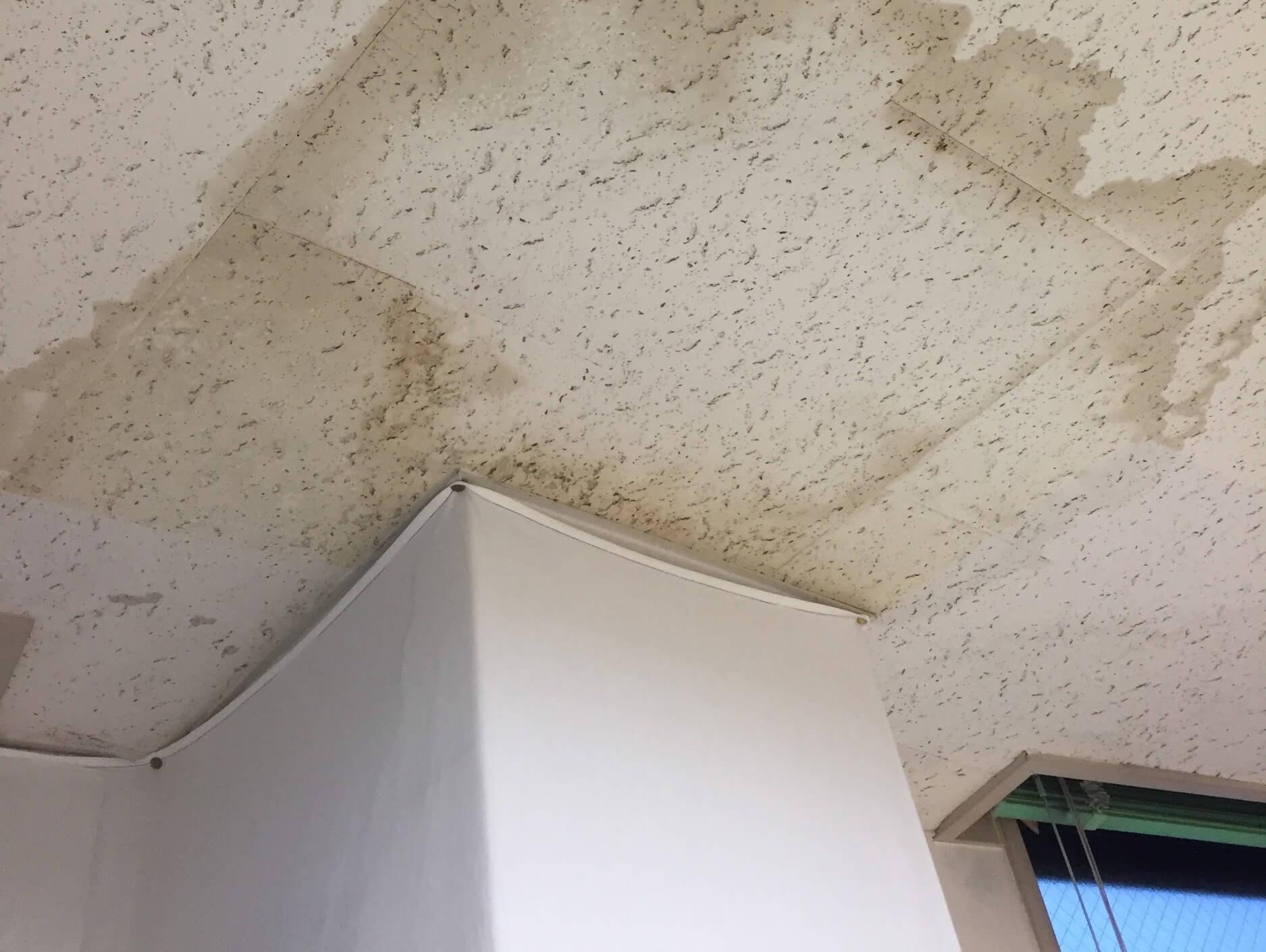 ビルの雨漏りは被害が深刻!その原因と取るべき初期対応を全て解説!