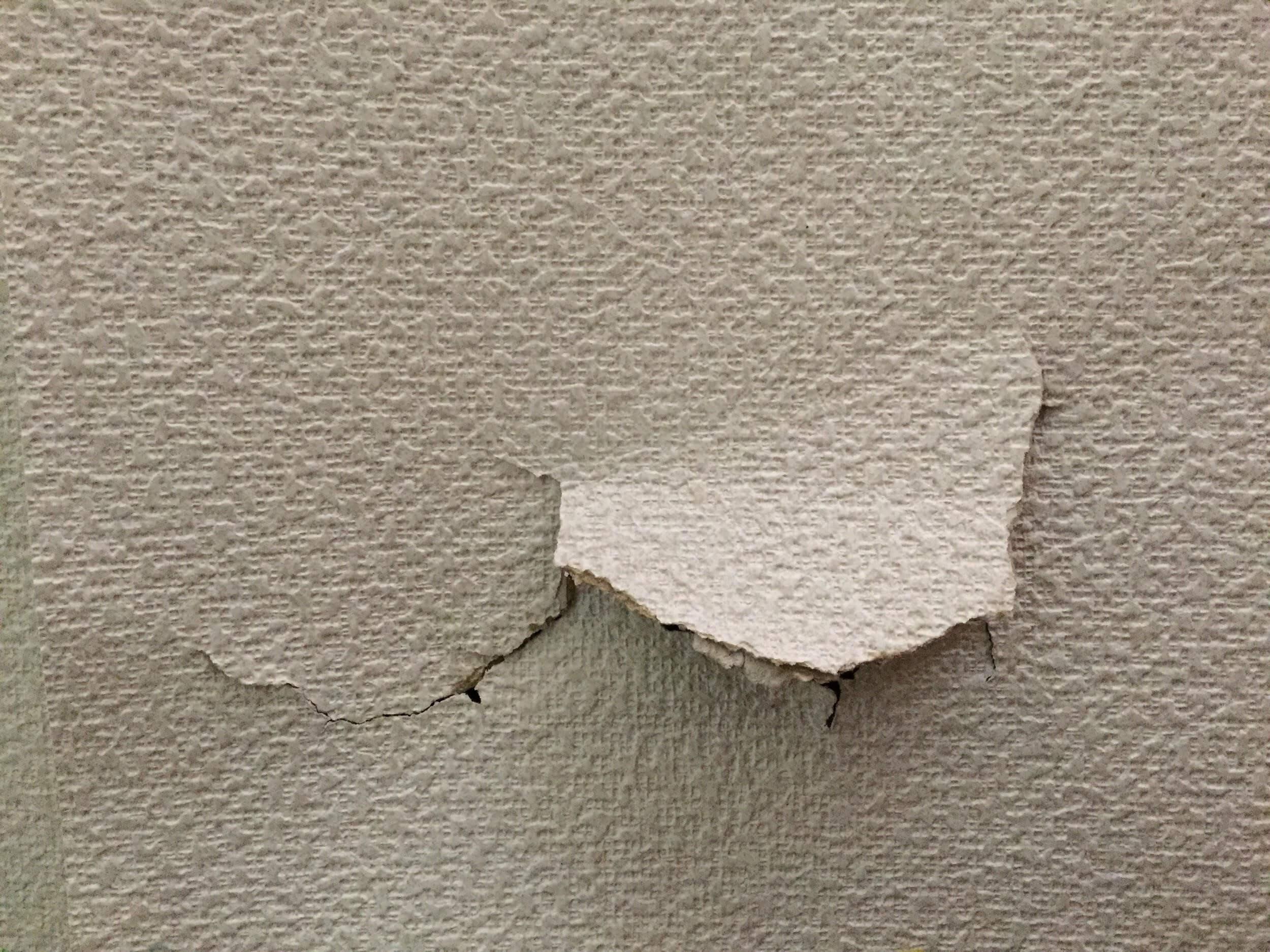 放置するほど高額補修になる壁の傷