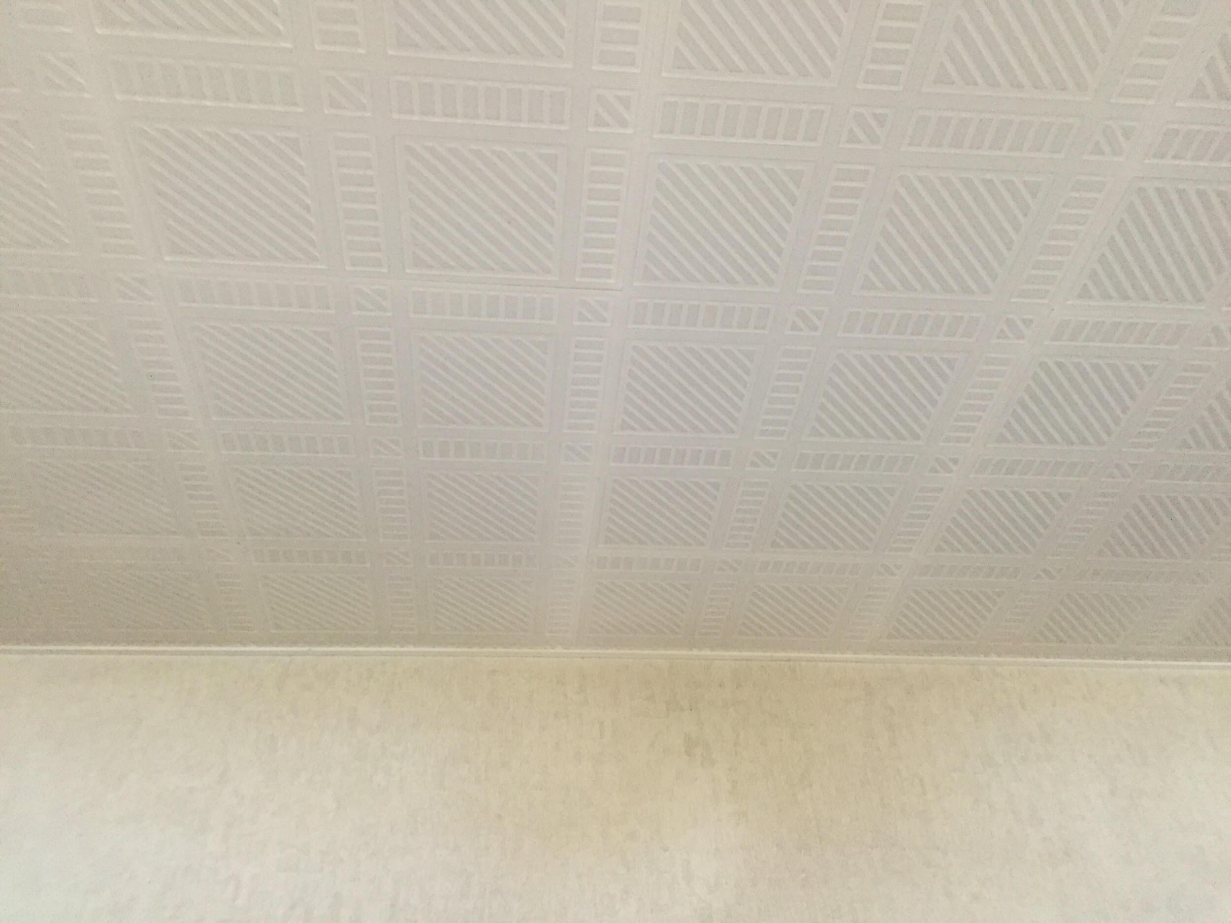 天井も張替えたい
