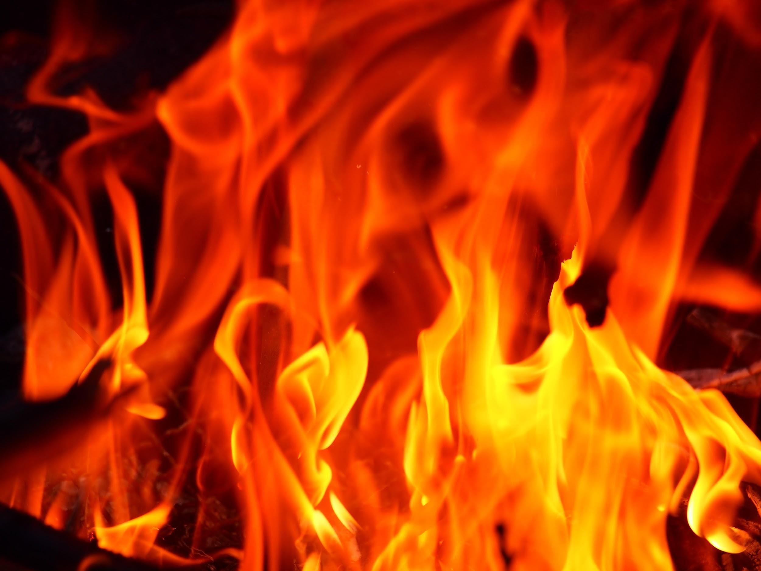 火災保険でフローリングの色を格安で変える
