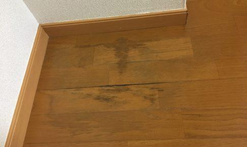 フローリングの黒ずみ掃除方法を伝授!洗剤や落とし方を全て解説